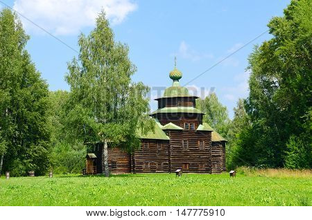 KOSTROMA RUSSIA - JULY 20 2016: Kostroma Architectural-Ethnographic and Landscape Museum-Reserve Kostromskaya Sloboda. Church of Elijah Prophet from village Upper Berezovets of Soligalichsky District of Kostroma region