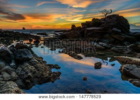 Labuan, Malaysia rock bonsai during sunset part 3