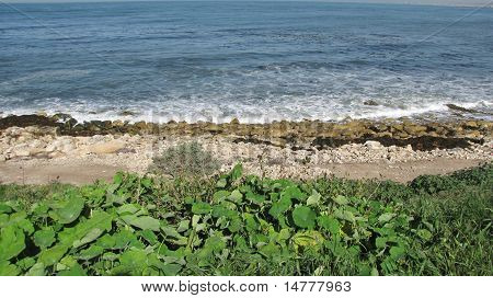 Redondo Beach Ocean View