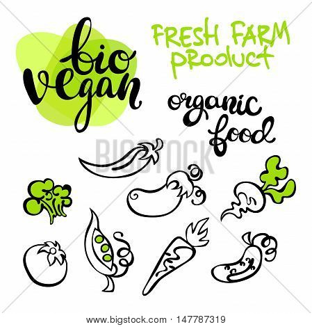 Fresh farm product. Bio vegan. Organic food. Vegetables: tomatoes, eggplant, peas, cucumber, carrots, beets, broccoli and hot pepper. Isolated vector objects on white background. Lettering.