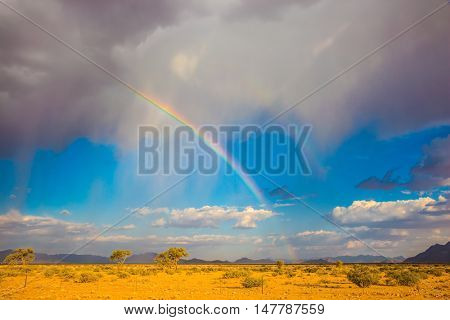 Travel to Namibia.The concept of exotic tourism. Magnificent rainbow crossed the sky over the desert. Dirt road in the African steppe