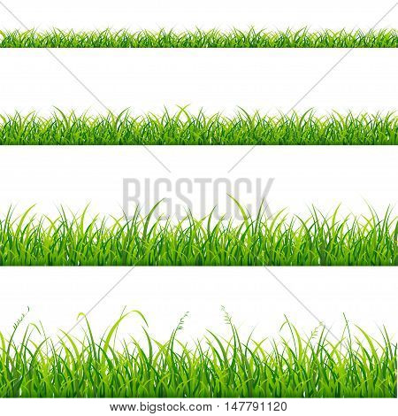Green Grass Line Set Element for Design. Vector illustration
