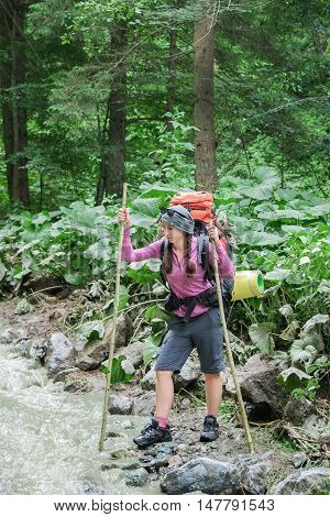 Hiker woman with backpack plans to cross mountain river to ford in forest. Hiking and leisure theme. Adventure people on hike hiking in nature