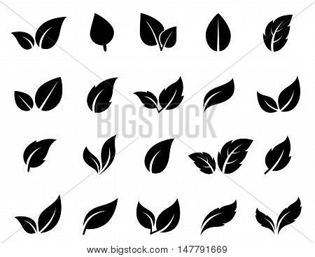 isolated abstract leaf icons set on white backgrounds