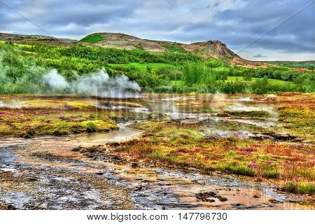 Geothermally active Haukadalur Valley in Southwest Iceland