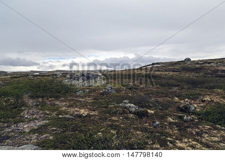 This is the Hardangervidda National Park in Norway in overcast weather.