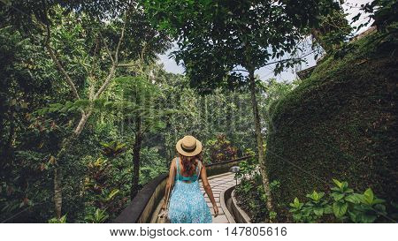 Rear view shot of young woman in hat walking in tropical garden. Female tourist enjoying a day in nature.