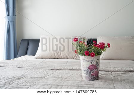 The bed with red common purslane flower on vintage flower pot and sunlight from glass of windows in bedroom.