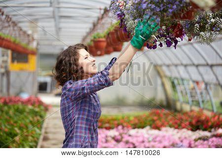 happy female nursery worker trimming plants in greenhouse