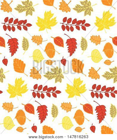 Colorful Autumn Pattern