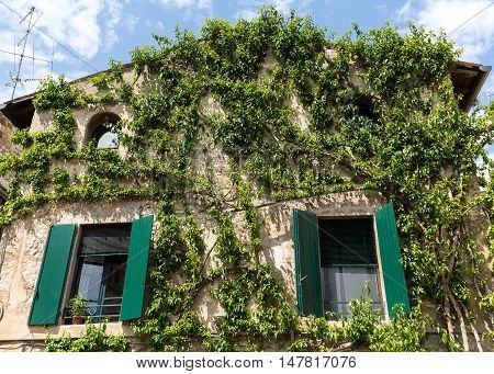 Old house covered by ivy in Sirmione on Garda Lake Italy