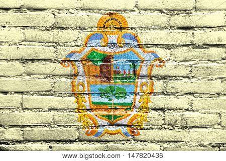 Flag Of Manaus, Amazonas, Brazil, Painted On Brick Wall