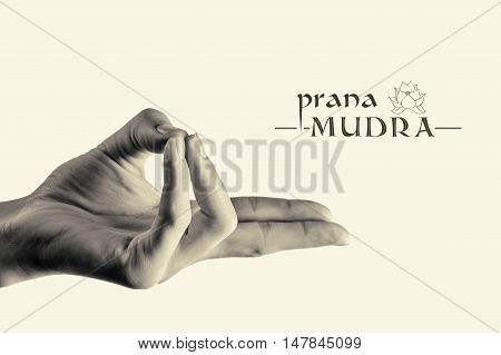 B/W image of woman hand in prana mudra. Gesture is isolated on toned background.