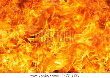 Burning fire flame background. Burning fire flame.