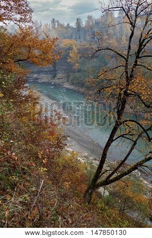 Golden autumn landscape of rapid mountain river gorge. Top view
