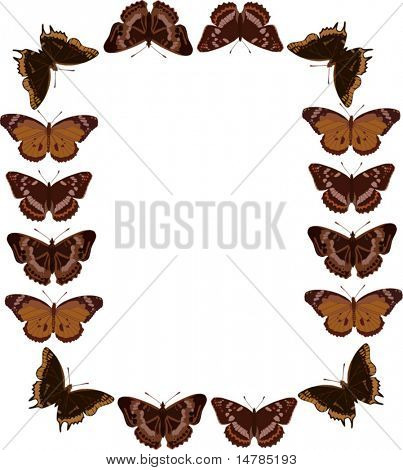 illustration with butterfly frame on white background
