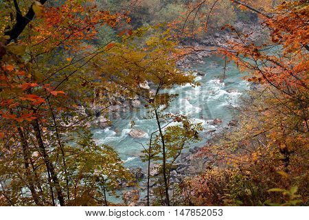 Fall landscape of river canyon with trees in yellow red orange colorful leaves