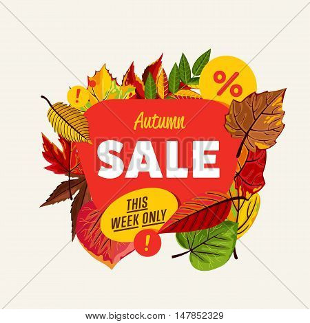 Autumn sale design template, vector illustration. This week only banner with colorful leaves on white background. Advertisement about autumnal discount. Business event concept.