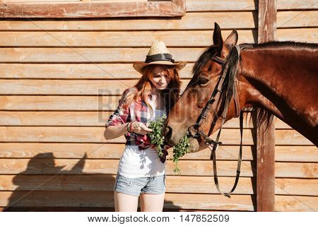 Smiling lovely young woman cowgirl giving fresh grass ti her horse