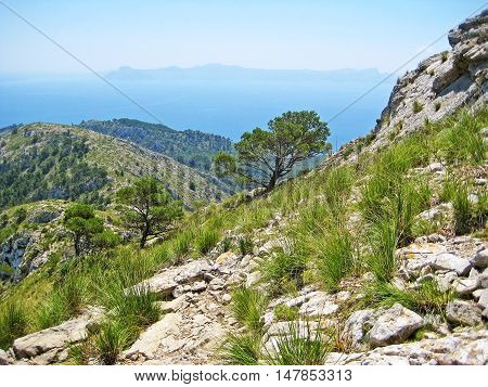 Mountain Panorama With Ocean View