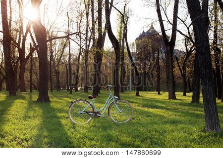 Nice and beautiful bicycle in a city park summer