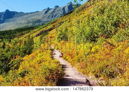 Scenic Autumn colors in the Glacier National Park, Montana, United States