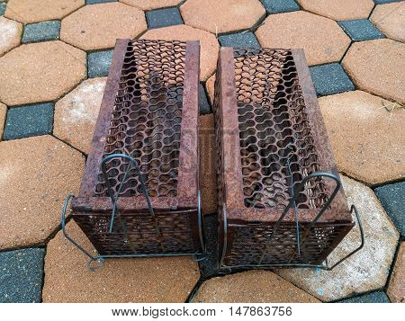 Rat in Cage Trap Deal Rats and Mice by Your Self in Your Home