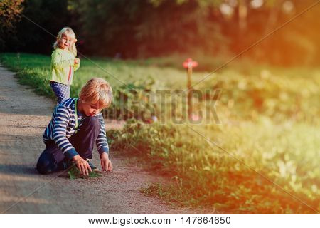 little boy and girl playing in summer nature, shot with tilt shift