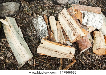 Pile Of Firewood On The Ground