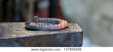 Blacksmith forges a horseshoe for horse .