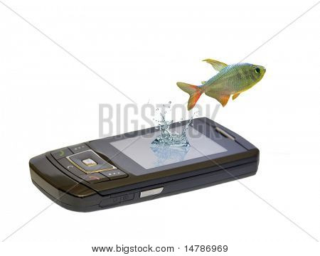 small fish is jumping from telephone isolated on white background