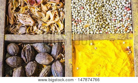 Spices and herbs. Variety of spices and oriental herbs. Food background