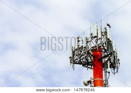Antenna Tower Cell Phone With An Eaglet Stand Over