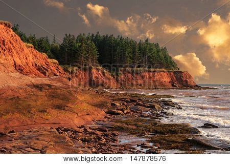 The shoreline and red cliffs of Prince Edward Island at dusk.