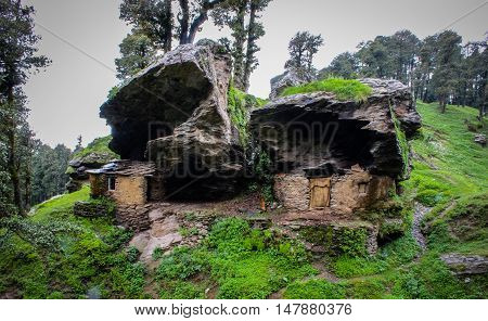 Survival signature of Tribal community of Himalayan Mountains