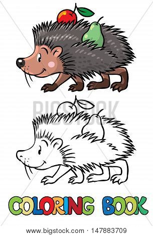 Coloring book or coloring picture of funny hedgehog with apple and pear on his needles. Children vector illustration