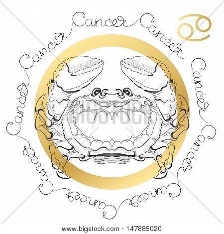 Hand drawn line art of decorative zodiac sign Cancer on white background. Horoscope vintage card in zentangle style with words.