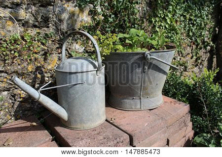 Metal Bucket and Watering can being used as a plant pot.
