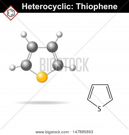 Thiophene five-membered heterocyclic ring molecular structure 2d and 3d vector illustration isolated on white background eps 8
