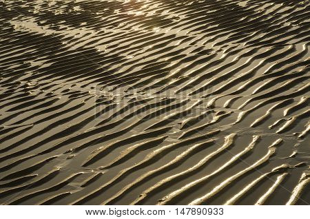 Natural golf wrinkles in the beach of Zoutelande in Netherlands at sunset