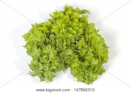 Above View Of Green Leaves Of Mustard Plant