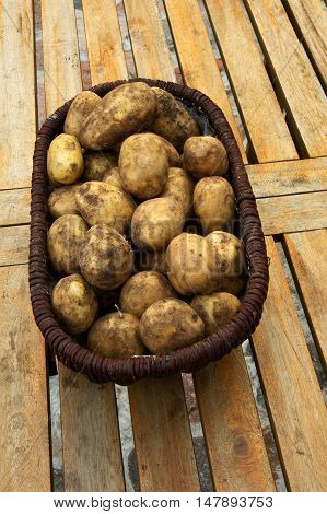 Wicker basket full of freshly dug potatoes standing on a table with wooden planks. Poland september. Vertical view on top