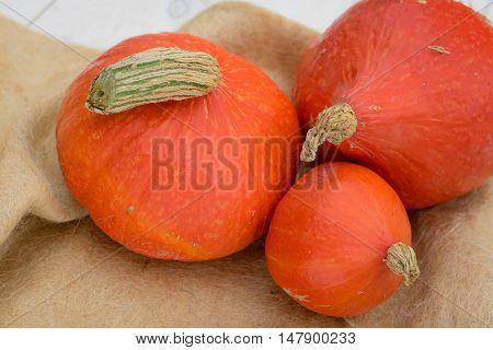 Detail of three Hokkaido pumpkins still life