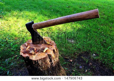 An axe with a wooden handle on a stubwith a background of sun-lit green grass