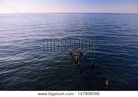 Sea, Sky, Horizon at Sunset; Wooden Breakwaters with Seagulls Sitting on Them in the Foreground