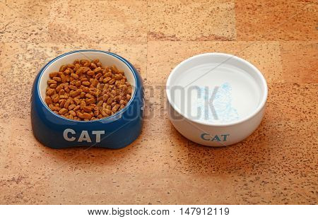 Dry Cat Food And Water In Bowl On Brown Floor