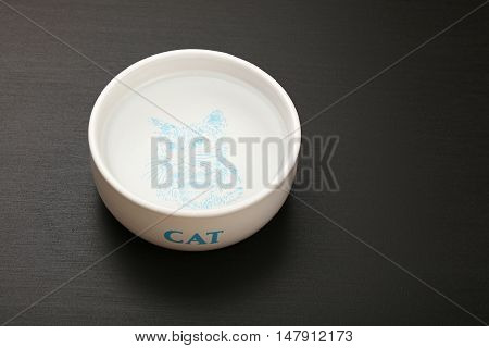 Cat Water In Ceramic Bowl On Black Floor