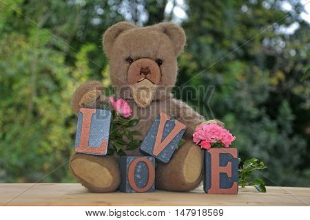 Antique brown teddy bear sitting with Love stones against green nature background and pink roses