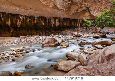 Narrows in Zion National Park Utah USA