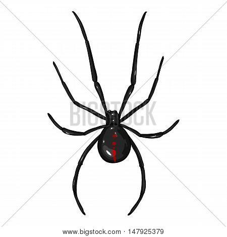 Vector Cartoon Black Widow Spider